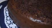 Çikolatalı Yaban Mersinli Pasta